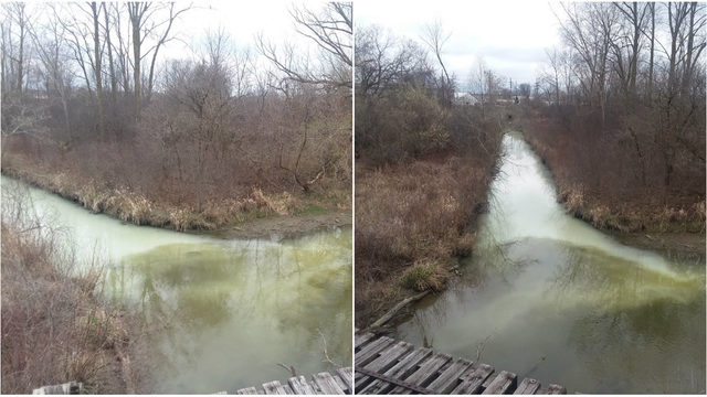 Unknown milky, white substance found in Sterling Heights drain