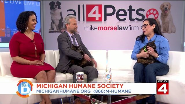Give the gift of hope to animals at the Michigan Humane Society by&hellip&#x3b;