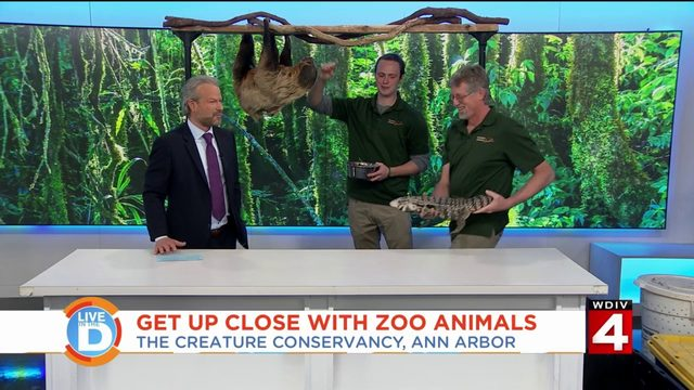 Get up close with zoo animals
