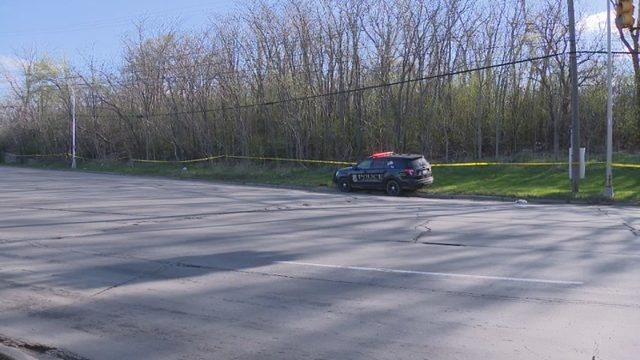 Police find human skeletal remains near Michigan Avenue in Dearborn