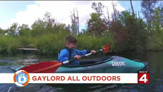 Discover a new place to enjoy Michigan summers with Gaylord Travel