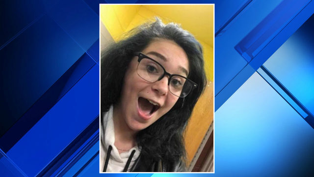 Missing Pittsfield Township teen found safe