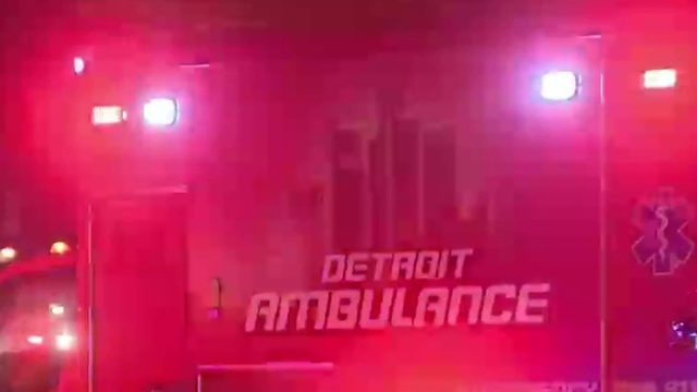 Detroit man charged in police shootings