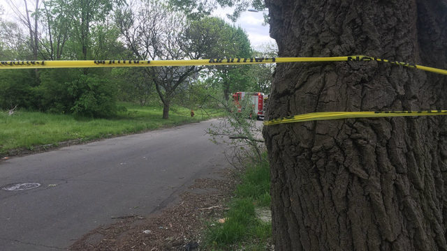 Woman's body found in Detroit, police investigating possible homicide
