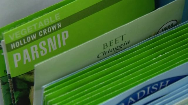 Metro Detroit libraries host free 'Gro-Town seed stations'
