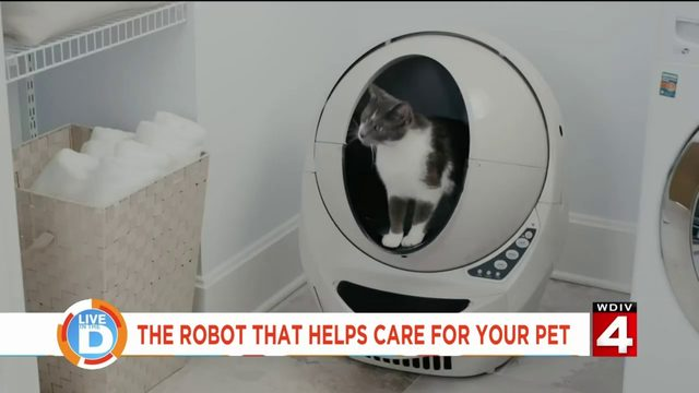 You don't have to clean your cat's litter box anymore