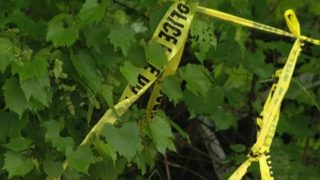 Detroit police link deaths of 3 women to possible serial killer…
