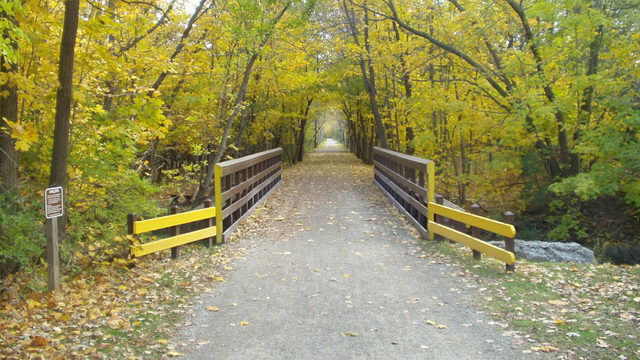 5 amazing places to go for a run in Metro Detroit