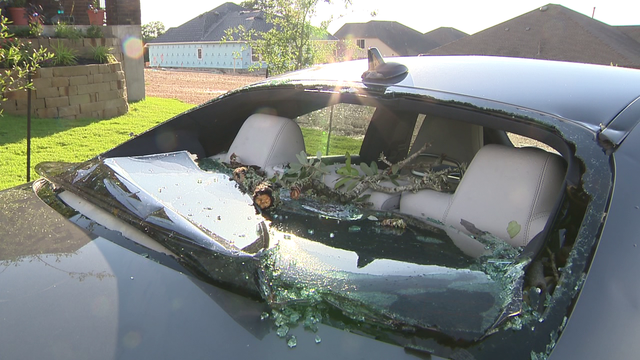 KSAT: Trees fall on car during storm, nearly injuring girl