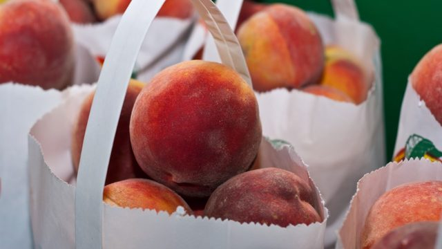 Southwestern Michigan loses peach harvest after polar vortex