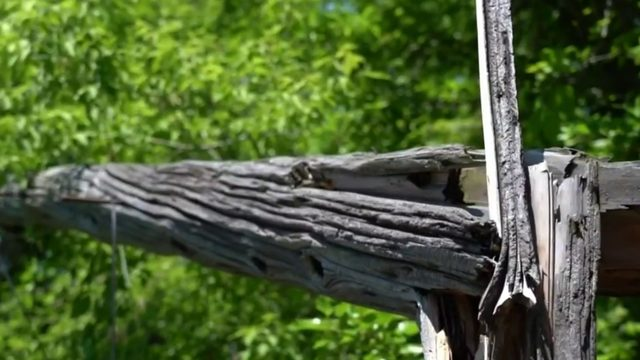 Detroit man waits months to have broken utility pole removed in backyard