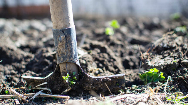 Leslie Science & Nature Center changes programming after soil tests…