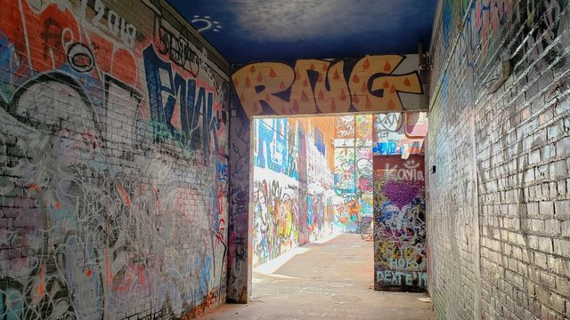 Seven places in Ann Arbor to see before the school year starts