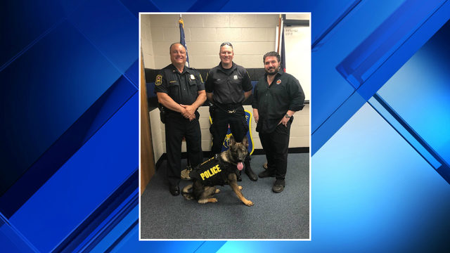 New Eastpointe police dog receives donated ballistic vest