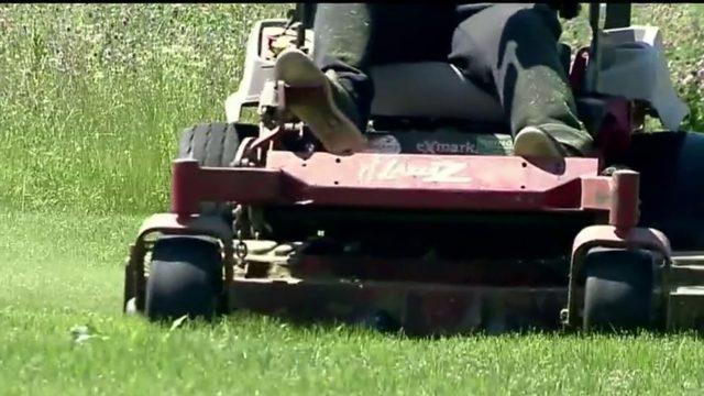 New lawn care app helps you hire landscape workers