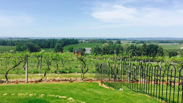This beautiful northern Michigan winery has breathtaking views