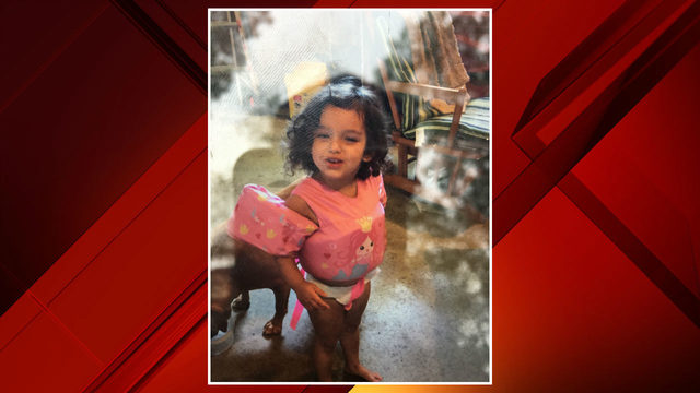 2-year-old girl from Monroe area missing in Northern Michigan