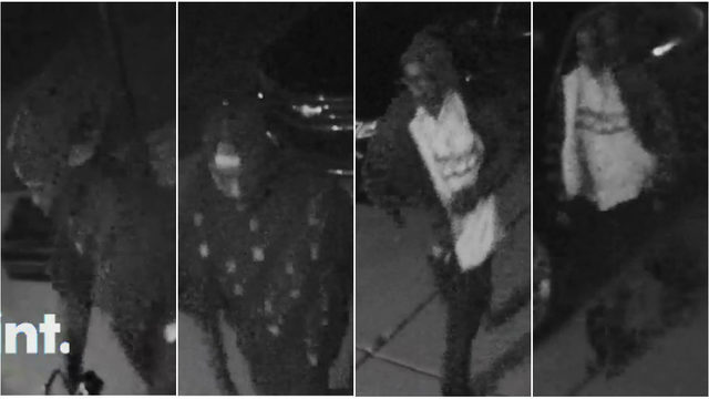 Police search for men who stole lawn equipment from Chesterfield Township home