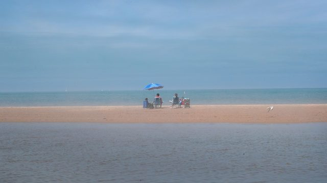 7 Michigan beaches closed due to high bacteria levels