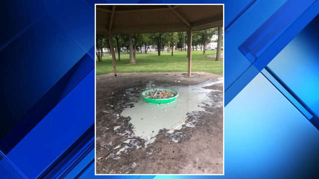 Group pours glue, garbage all over Roseville park because bounce house…