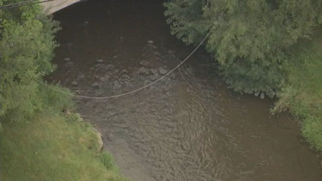 Downed power line removed from Rouge River in Beverly Hills