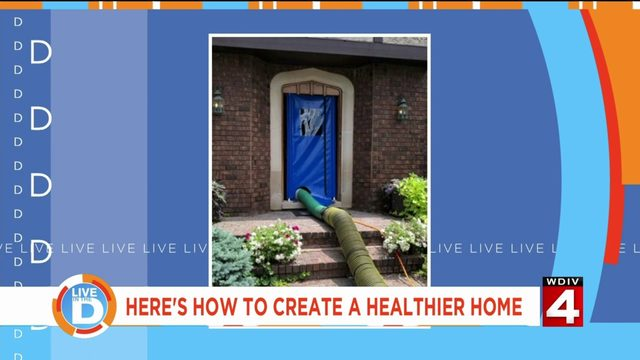 Here's how to create a healthier home