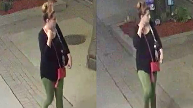Police seek woman who stole lawn ornaments from Eastpointe credit union