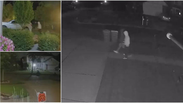 Rochester police search for men caught on video stealing from vehicles