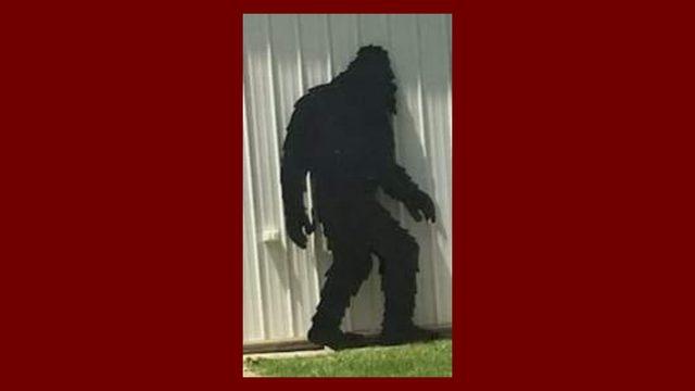 'Bigfoot' stolen from shop in Howell