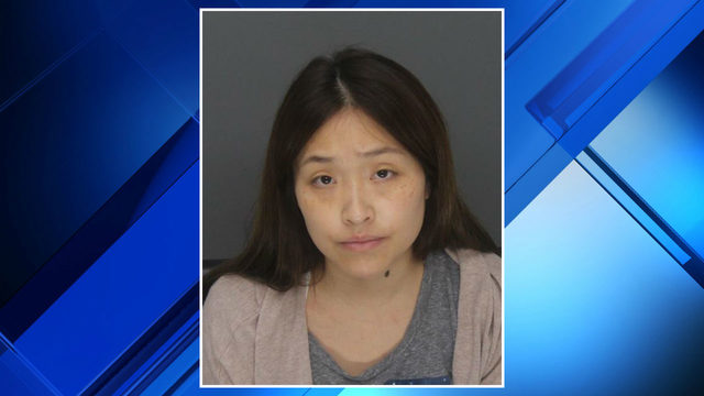 Woman charged with prostitution after performing 'lewd act' at Troy…
