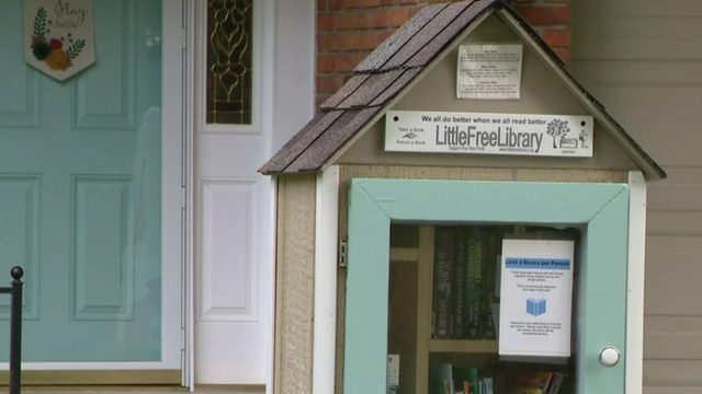 VIDEO: Police seek Livonia Little Free Library book thief