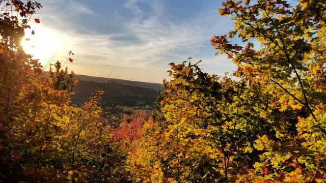 Top 5 scenic fall vistas in Gaylord, Michigan