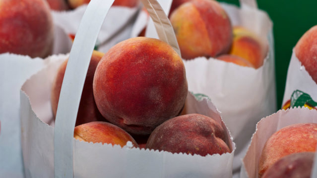 A guide to the 2019 Romeo Peach Festival