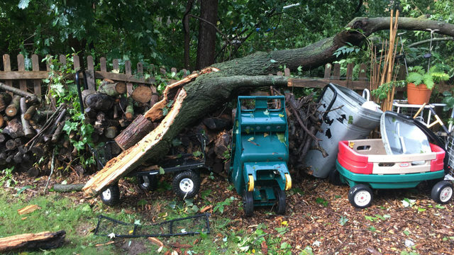 PHOTOS: Storm damage on Sept. 13, 2019, in West Bloomfield