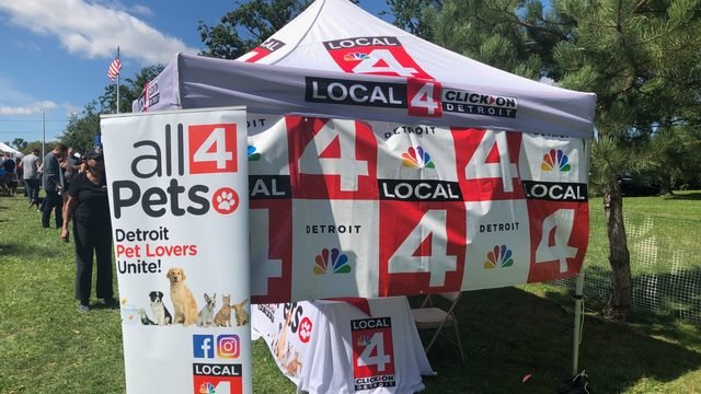 See all the dogs who visited our Local 4 tent at Barktoberfest in Royal Oak!