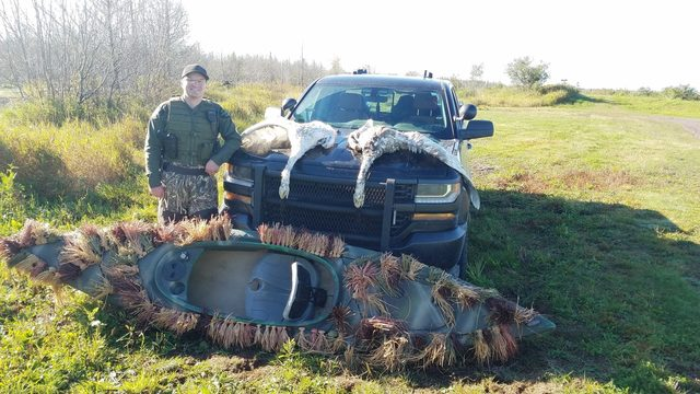 Brothers caught illegally killing swans in Michigan's Upper Peninsula, DNR says