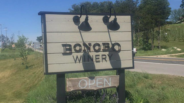 Northern Michigan wineries to visit this fall