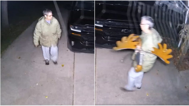 Woman steals moose decoration from Livonia home in middle of night, police say
