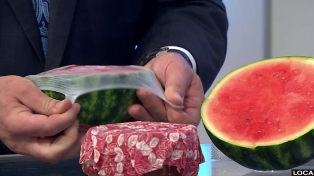 Reusable food covers put to the test for Try It Out Tuesday