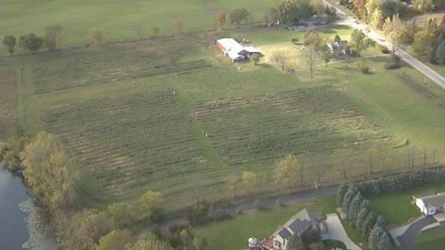 Thieves steal 7,000 pounds of apples off trees owned by Fenton apple orchard