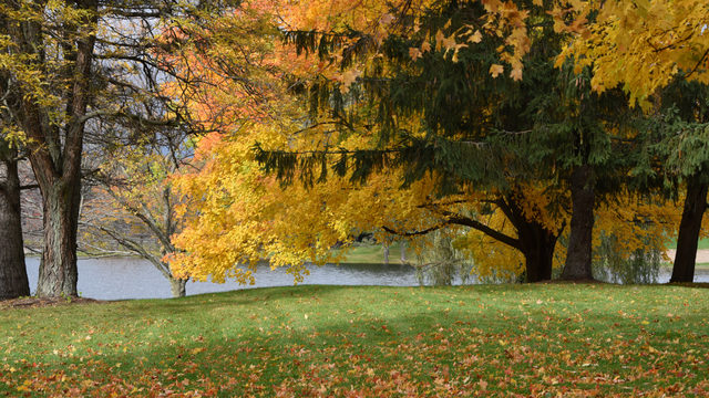 Fall in love with these photogenic autumn spots